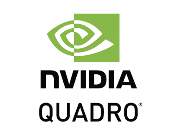 Nvidia Quadro vDWS Subscription License, 1CCU, 3 yr (SFT-NVD-G2W3S)