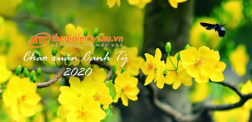 Thông báo lịch nghỉ Tết Dương lịch 2020 và Tết Nguyên đán Canh Tý